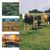 Agriculture biologique abonnement combin